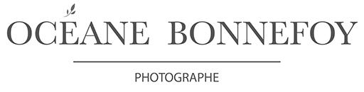 photographe yvelines rambouillet bébé famille enfant
